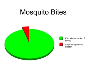 silver star mosquito